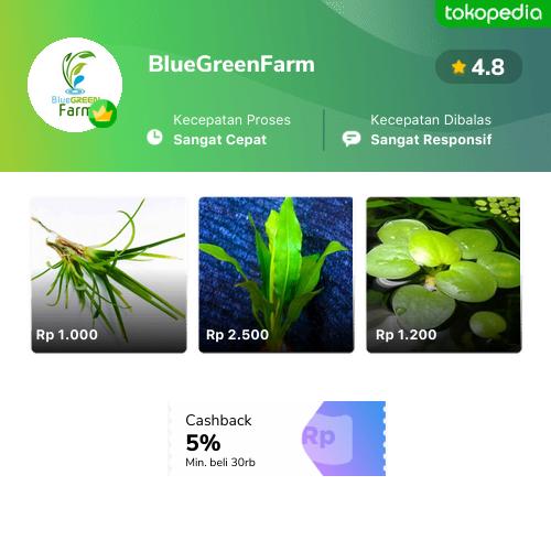 BlueGreenFarm - Ciampea, Kab. Bogor | Tokopedia