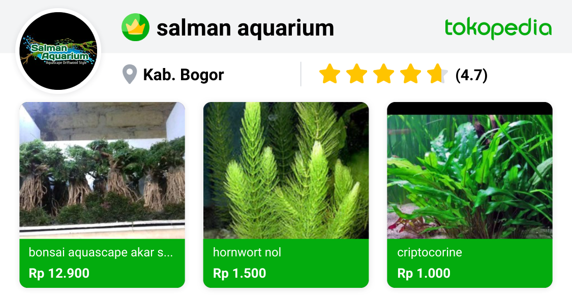 salman aquarium - Tenjolaya, Kab. Bogor | Tokopedia